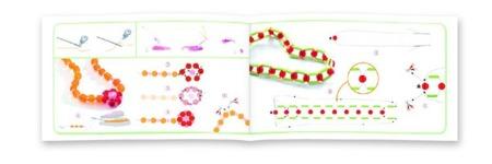 Kreatywny zestaw do tworzenia biżuterii - 10 wzorów koralików, motyw Owocowa Harmonia, DJECO DJ09814